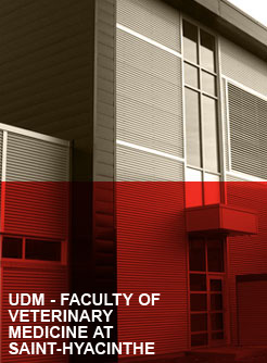 UDM-Saint-Hyacinthe-Faculty-of-veteninary-medicine-Saint-Hyacinte